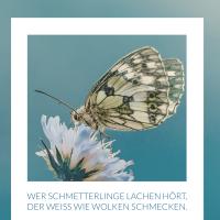 Wer Schmetterlinge lachen hört, der weiß wie Wolken schmecken.
